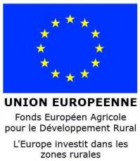 Logo feader ue invest zones rurale